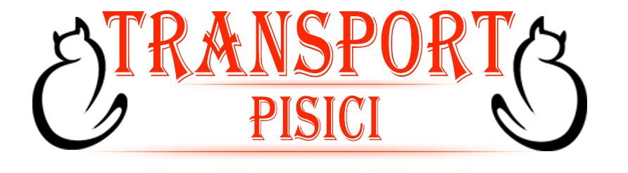 Transport international pisici logo